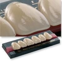 Kivehető Protézis - A fogak